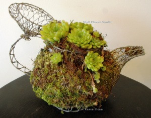 Succulents in Wire teapot at Wall Flower Studio