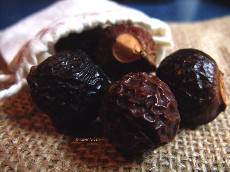 Soap nuts at Wall Flower Studio
