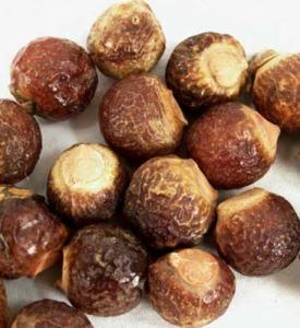 soapnuts WFS