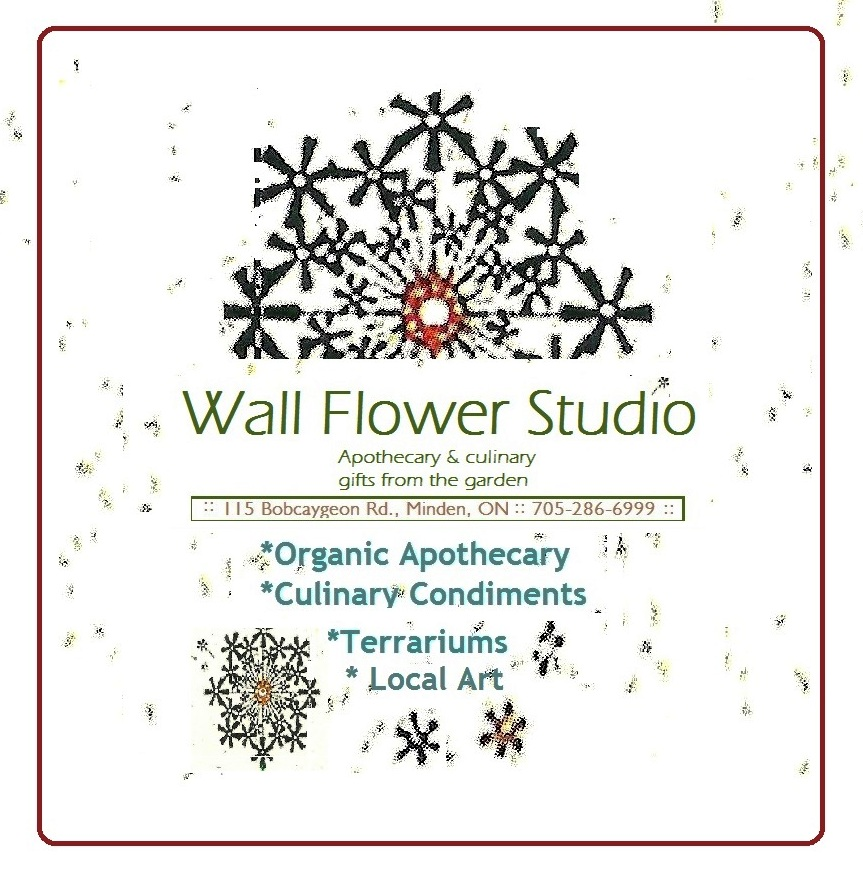 Wall Flower Studio business logo square