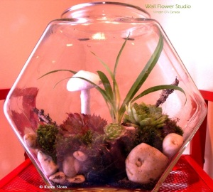 Fishbowl terrarium with mushroom - Wall Flower Studio