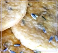 lavender shortbread cookies Wall Flower Studio
